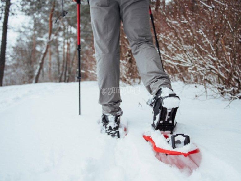 前往阿蒂加德林的雪鞋