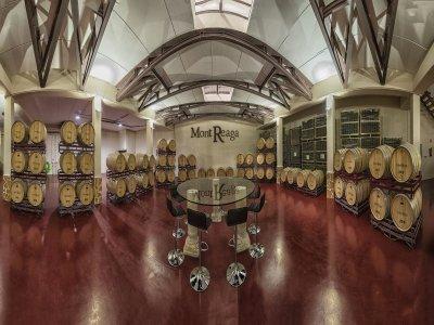 Cata de vinos y aperitivo bodega Monreal del Llano
