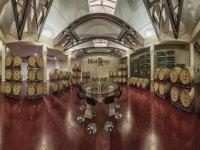 Visitando una bodega de vinos