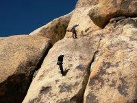 学习课程登山运动攀岩和速降