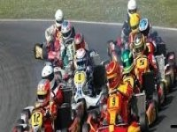 gruppo di amici alla guida di un kart.jpg