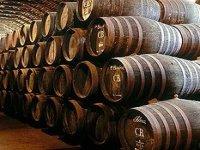 葡萄酒旅游2