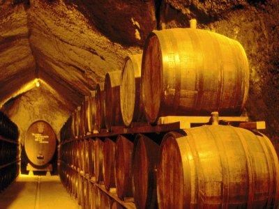 Visita guiada y cata de vinos Colmenar de la Oreja