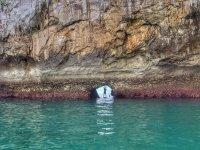 Abertura en la roca