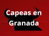 Capeas en Granada