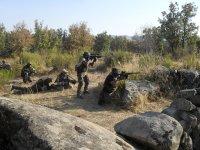 Open field battles.