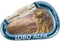Lobo Alfa Team Building
