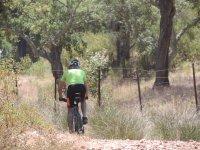 Los mejores senderos para ir en bici de montaña