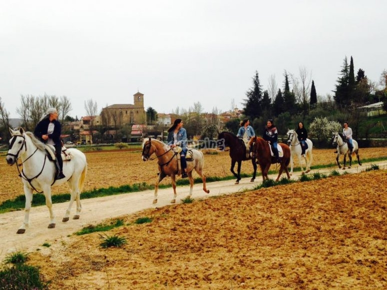 Passeggiate a cavallo attraverso Guadalajara