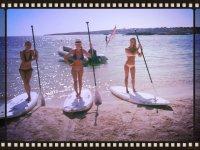 桨冲浪女孩我们的学生