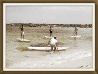 桨冲浪监视器和学生的最佳去处划桨冲浪