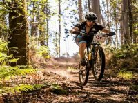 骑自行车的人享受着树木景观与海洋背景包围奥伦塞