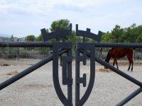 Start riding in Murcia