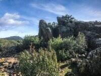 Cerro del Castillo徒步