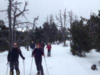 Excursion de raquetas de nieve en Barcelona