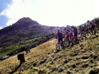 varios ciclistas montando en bicicleta