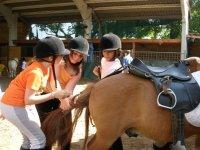 Preparazione del cavallo