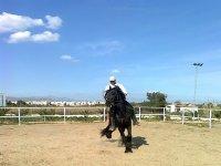 Jinete en la pista exterior de equitacion