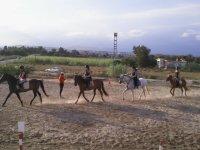 Lecciones de equitación en Elche
