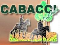 Cabacci