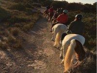 Excursión a caballo en Elche