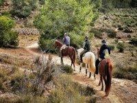 Sobre los caballos por el campo