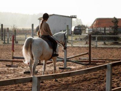 骑马在奇克拉纳-德拉弗龙特拉1小时