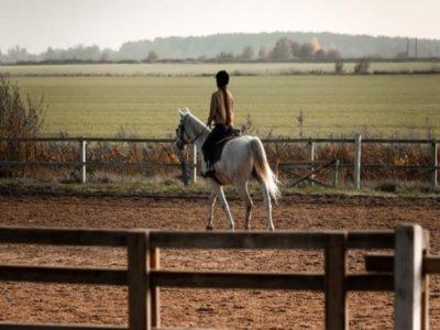 奇克拉纳5堂骑马课程的凭证