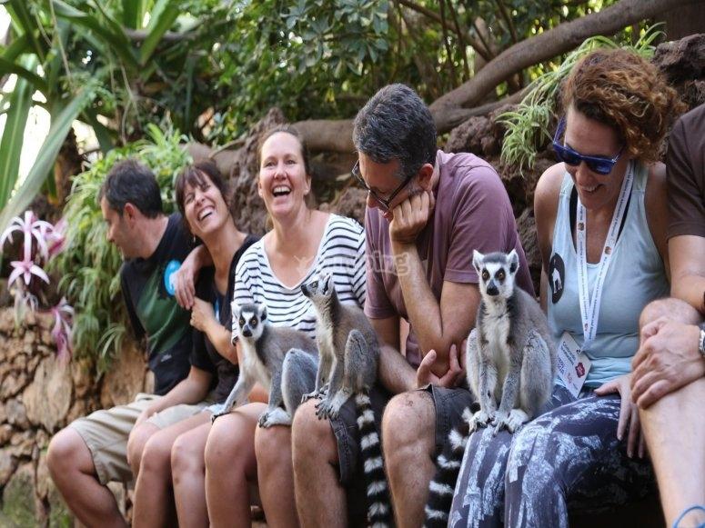 Groupe avec lémuriens