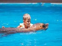 Garçon avec des lions de mer