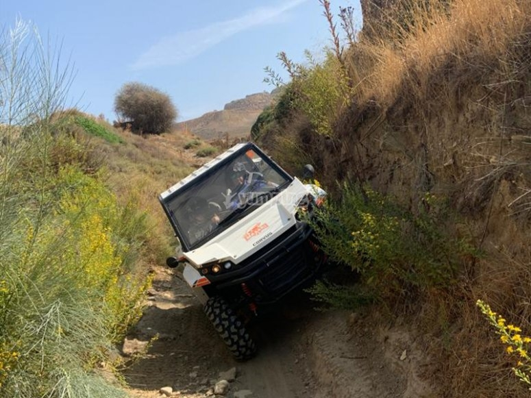 Paseo en buggy extremo