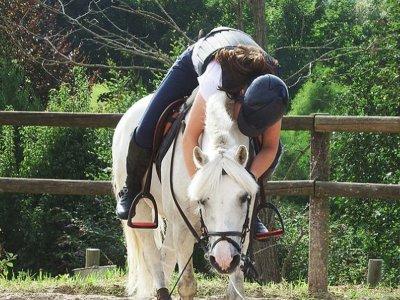 Lasarte-Oria的5堂骑马课程的凭证