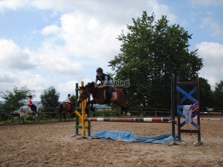 享受一天的骑马
