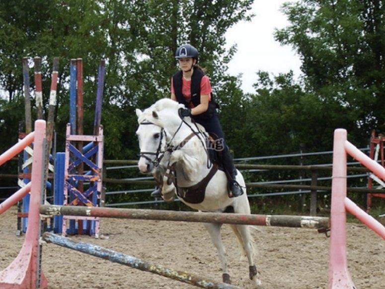 参加骑马课程的骑马