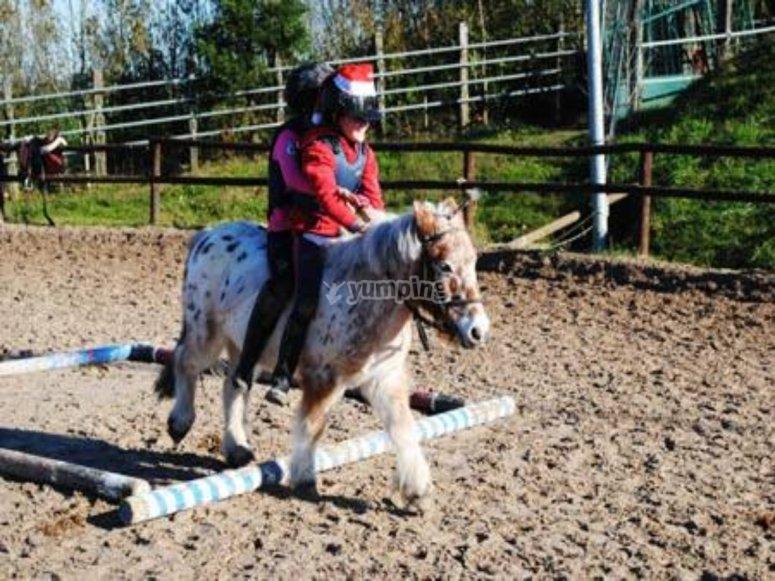 孩子在吉普斯夸(Guipúzcua)骑小马