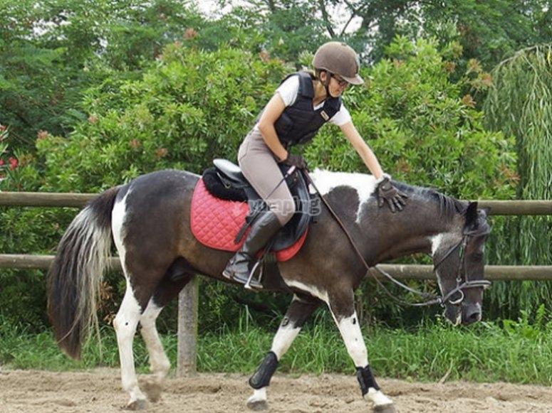 骑马课程券