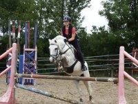 4 Corsi di equitazione livello I e II a Lasarte-Oria