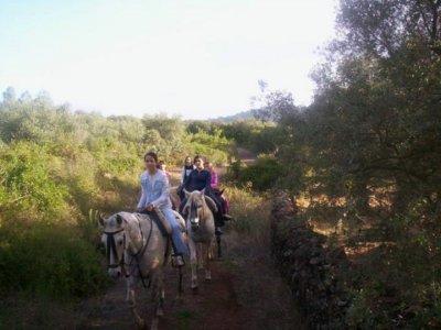 Centro Ecuestre El Camino Rutas a Caballo