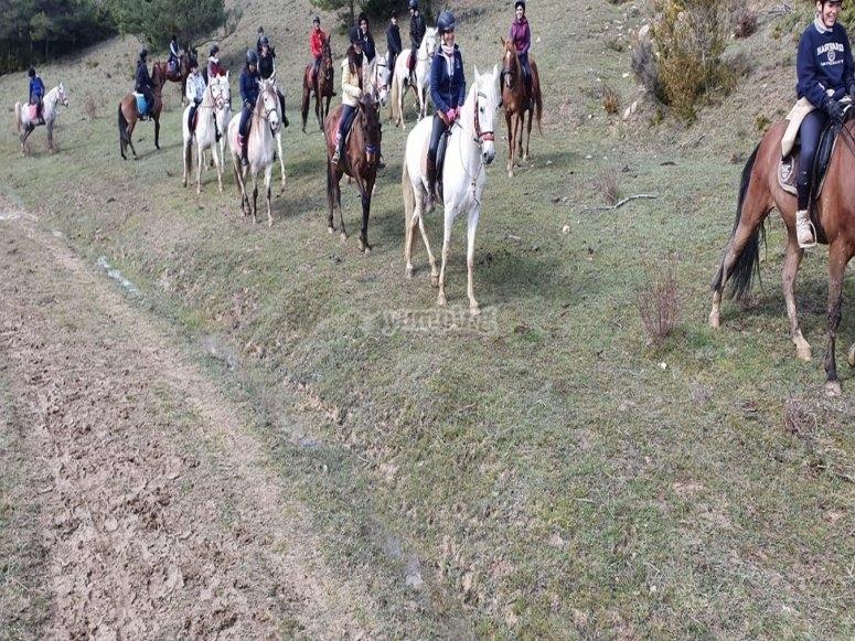 Passeggiate a cavallo attraverso Navarra