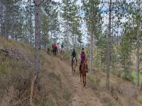 Ruta a caballo por Añezcar 90 minutos