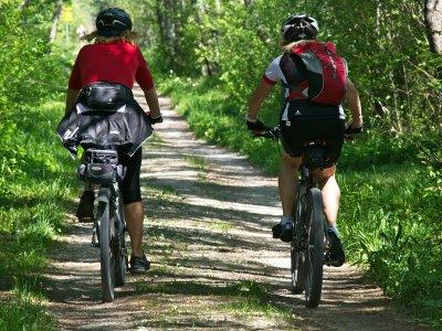 儿童自行车出租在坎弗兰克4小时