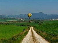 Volando sobre los paisajes verdes