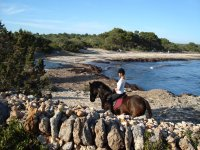 playa y caballo