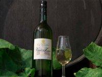 nuestro vino blanco