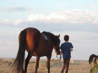 De vuelta a casa con el caballo