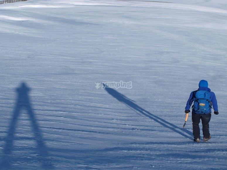 内华达山脉的雪靴