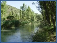 Zonas ideales para pesca