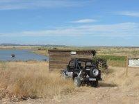Con el jeep junto al observatorio de aves