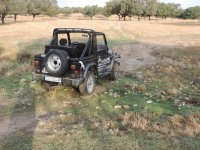 Off-road in the pasture