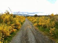 Caminos por los que ir en bici